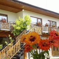 Hotel Pictures: Guest House Priateli, Emen