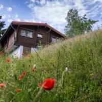 Hotelbilleder: Werrapark Resort Ferienhausanlage Am Sommerberg, Masserberg