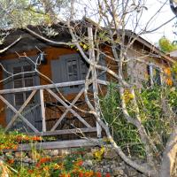 Hotel Pictures: La Cabane d'Esteban, Seillans