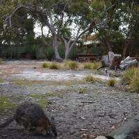 Hotelbilder: Kangaroo Island Wilderness Retreat, Flinders Chase