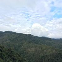 Hotel Pictures: Respect Travel, Baisha