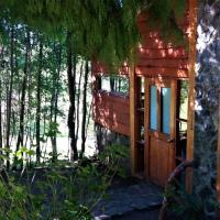 Hotel Pictures: Cabañas Llifenativo, Futrono