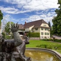 Hotelbilleder: Hotel Traube, Offenburg