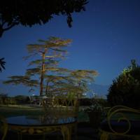 Photos de l'hôtel: Springfields Shimla, Shimla