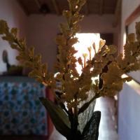Fotografie hotelů: Residencial Pinheiro, Trancoso