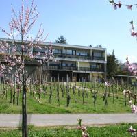 Hotelbilleder: Weinblick, Wintrich