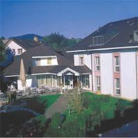 Hotel Pictures: Hotel Platanenhof, Frick