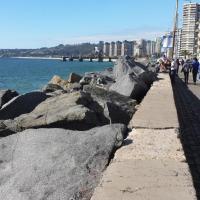 Hotel Pictures: Departamento cercano playas, Viña del Mar