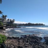 Φωτογραφίες: Kona Bali Kai Condo, Kailua-Kona
