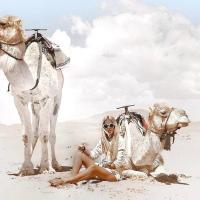 Fotos de l'hotel: Ali & Sara's Desert Palace, Merzouga