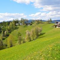 Hotellbilder: Gasthof Ochnerbauer, Kindberg