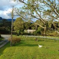 Hotel Pictures: Sítio Colina, Itaquá