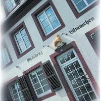 Hotel Pictures: Apartment-Residenz Lämmchen, Trier