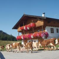 Hotel Pictures: Appartement Sonnrast, Oberau