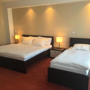 Hotel Pictures: Penzion Hermina, Veselí nad Moravou