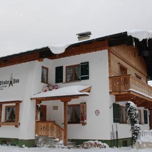 酒店图片: Chalet & Apartments Tiroler Bua, 阿亨基希