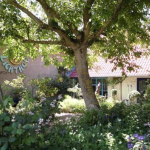 Hotelbilleder: Gastehaus und Cafe - Lichthof, Ottendorf