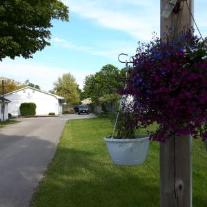 Hotel Pictures: The Maplewood Motel, Port Elgin