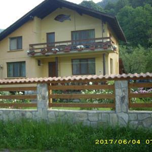 Foto Hotel: Villa Ribarica, Ribarica