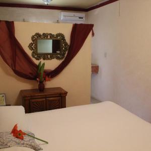 Hotel Pictures: Toucan's Nest Resort, Belmopan