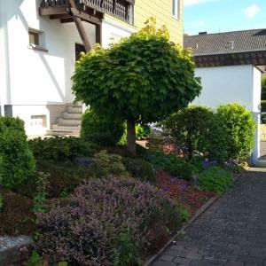 Hotel Pictures: Wohnung Emil19, Homburg