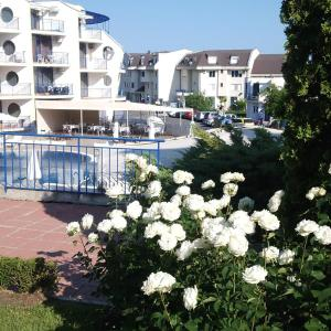 酒店图片: VP Apartment in Vega Village, 沃拉斯