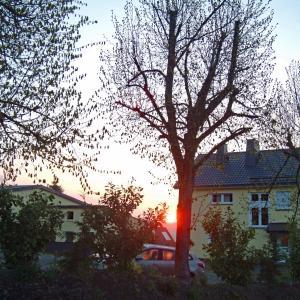 Hotelbilleder: Kaisers Ferienhof, Hallenberg