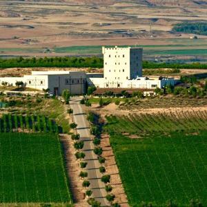 Hotel Pictures: Chateau Pago De Cirsus, Ablitas