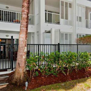 Fotos de l'hotel: 5213 BEACH CLUB DIRECT POOL ACCESS, Palm Cove