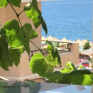 Фотографии отеля: Apartment Vila Violeta, Саранда