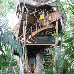 Hotellbilder: Lapa's Nest Tree House, Agujas