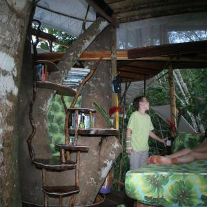 Hotel Pictures: Lapa's Nest Tree House, Agujas