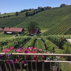 Hotelbilleder: Weinbau Winzerzimmer Veronika und Alfred Klöckl, Klöch