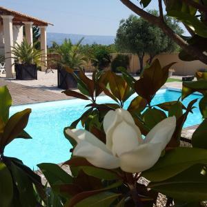 Hotel Pictures: Lamanderie En Provence, Alleins