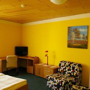 Hotel Pictures: Pension Duel, Ústí nad Labem