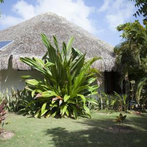 Hotel Pictures: Refugios Parajuru - Casa Inge, Parajuru