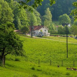 Hotel Pictures: 'Natur pur' Refugium für Mensch und Tier, Horgenzell