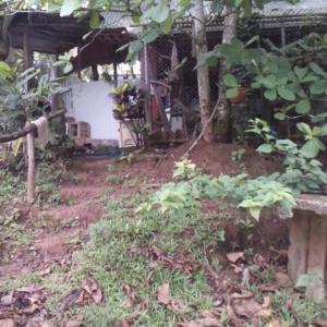 Hotel Pictures: La Casa de la Iguana, San Lorenzo