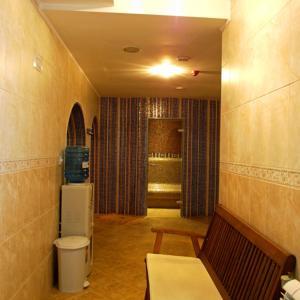 Hotel Pictures: Spa Hotel Borino, Borino