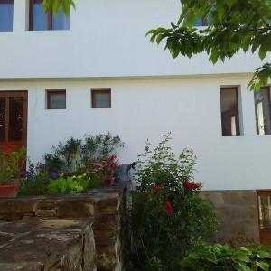 Hotelfoto's: Fenix Rooms, Arbanasi