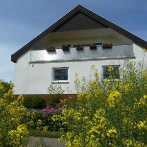 Hotelbilleder: Haus-Anita, Niederhorbach