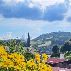 Hotelbilleder: Ferienwohnung-am-Kapellenberg-am-Rande-des-Nationalparks-Schwarzwald, Bad Peterstal-Griesbach