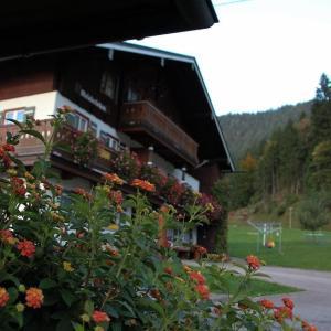 Hotel Pictures: Meislerlehen-Dachgeschoss, Schönau am Königssee