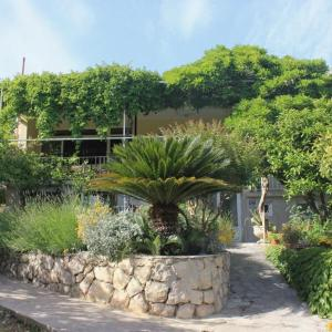 Hotelfoto's: Studio Mlini 8985a, Mlini