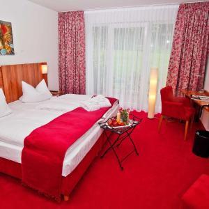 Hotel Pictures: Wohlfühlhotel Rabenhorst, Homburg