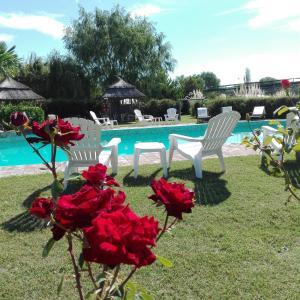 Фотографии отеля: Establecimiento Rural El Chañar, San Rafael