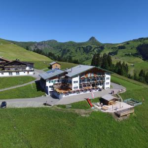 Fotografie hotelů: Hotel Pension Hertehof, Damuls