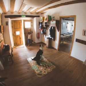 Hotel Pictures: La madriguera de Tomaso, Eraul
