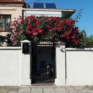 Hotel Pictures: Rooms Veska, Byala