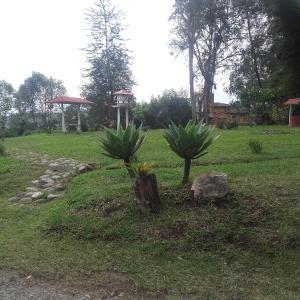 Hotel Pictures: La Gaviota BnB, Filandia